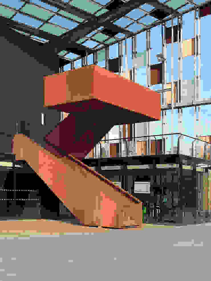 Le Métaphone par Herault-Arnod Architectes