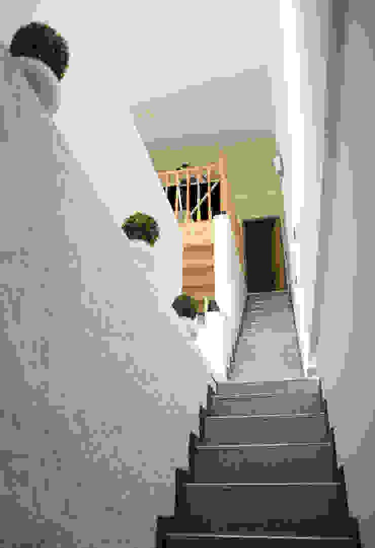 Le 16 - Montée d'escalier Maisons modernes par Aurélie Ronfaut dite Thi-Lùu Moderne