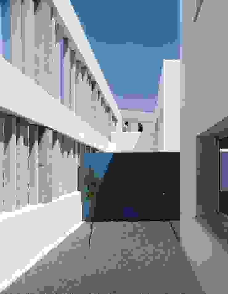 Patio del limonero Espacios de gabriel verd arquitectos