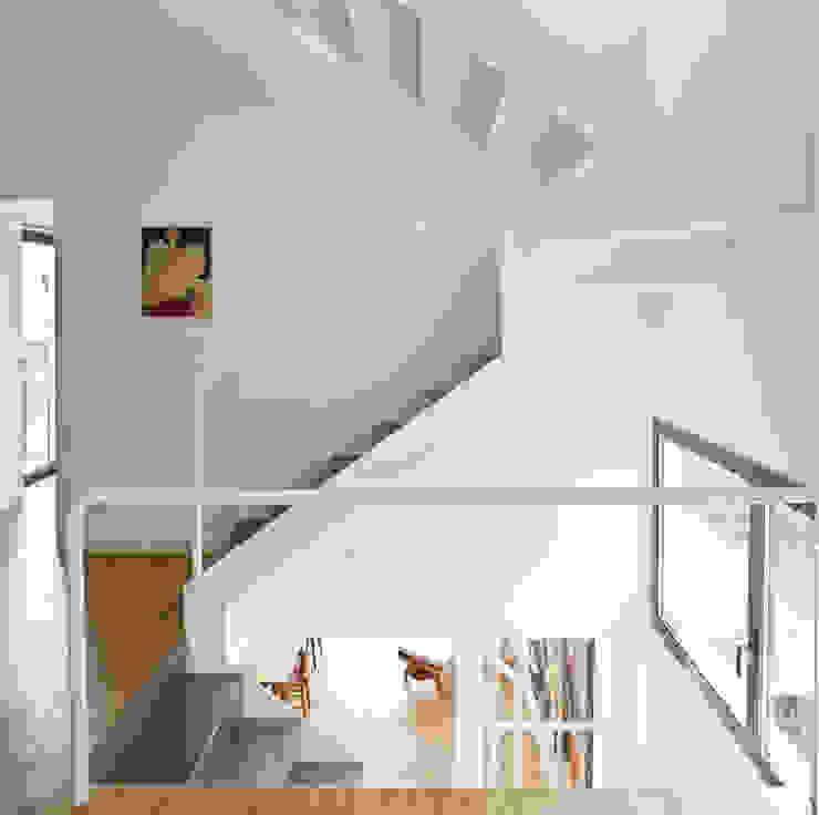 niveles Pasillos, vestíbulos y escaleras de estilo minimalista de hollegha arquitectos Minimalista