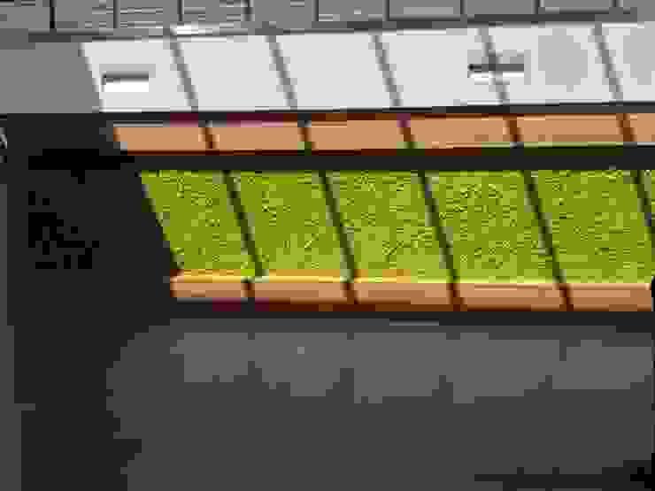 GIARDINO VERTICALE Pareti & Pavimenti eclettiche di Studio Pastore Architettura Eclettico