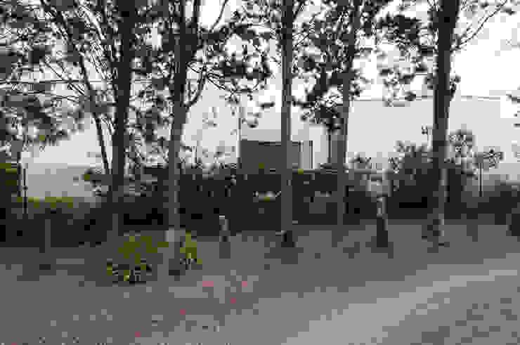 Façade Sud Maisons minimalistes par Frédéric Saint-cricq Architecte Minimaliste