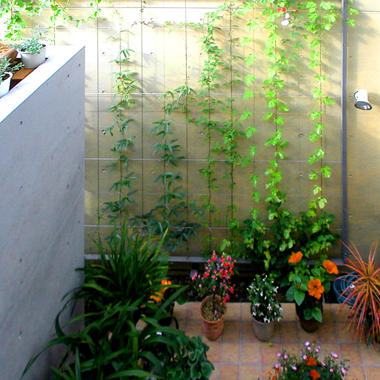 花壇の家 モダンな庭 の ユミラ建築設計室 モダン