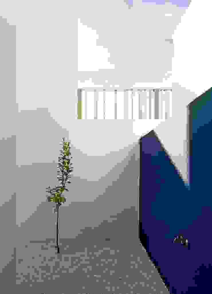 Interior patio Espacios de gabriel verd arquitectos