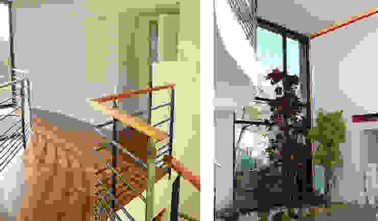 Maison dans les arbres par AM architecture Minimaliste