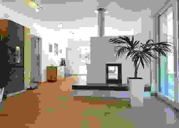 la casa como espacio vital Salones de estilo moderno de hollegha arquitectos Moderno