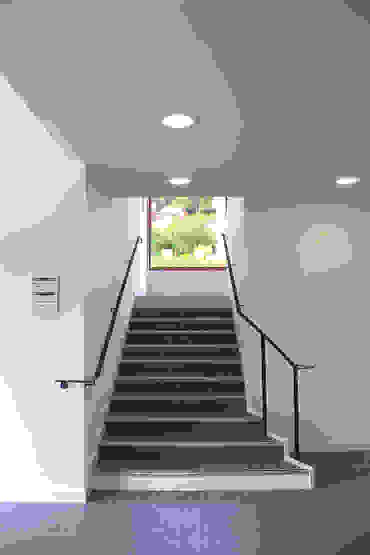 Escalier Espaces de bureaux modernes par 3B Architecture Moderne