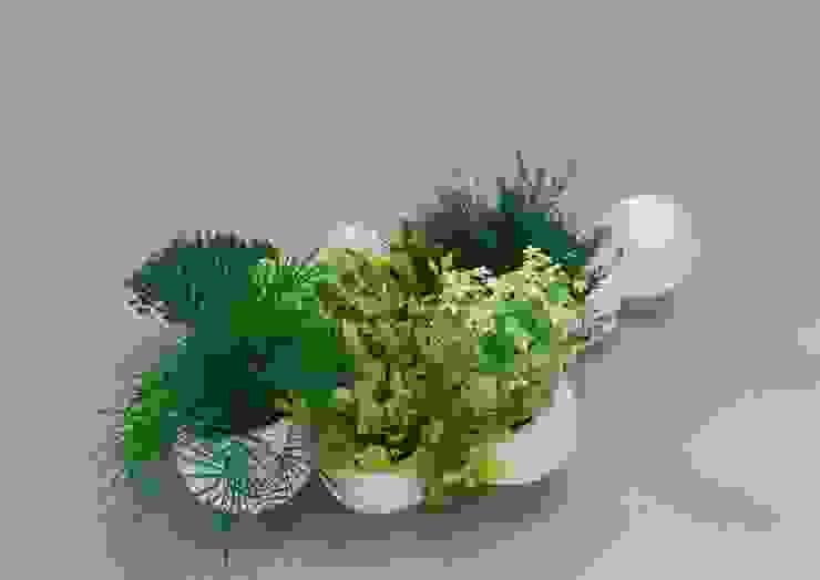 Architetto e Designer JardimPotes e vasos