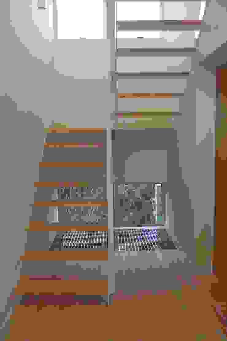 おゆみ野の家 屋上緑化や軒の深いテラス、吹抜けなど自然と家族をつなぐ温かみのある家 モダンスタイルの 玄関&廊下&階段 の アトリエ24一級建築士事務所 モダン