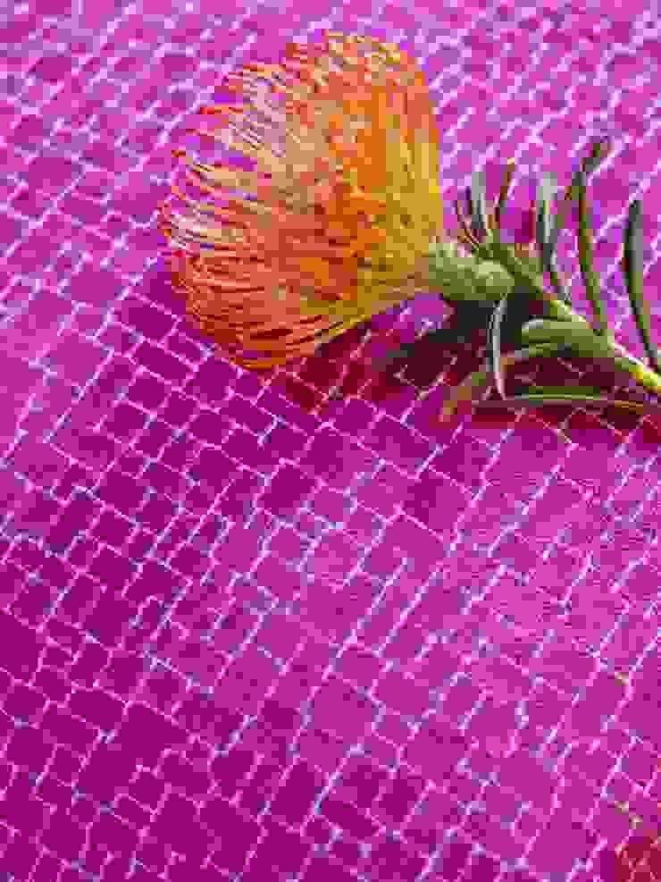Roco cam Oleh Prestigious Textiles Mediteran