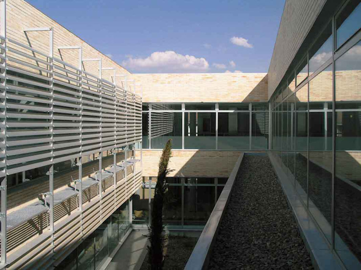 Vista del patio central Jardines de estilo moderno de Argola Arquitectos Moderno