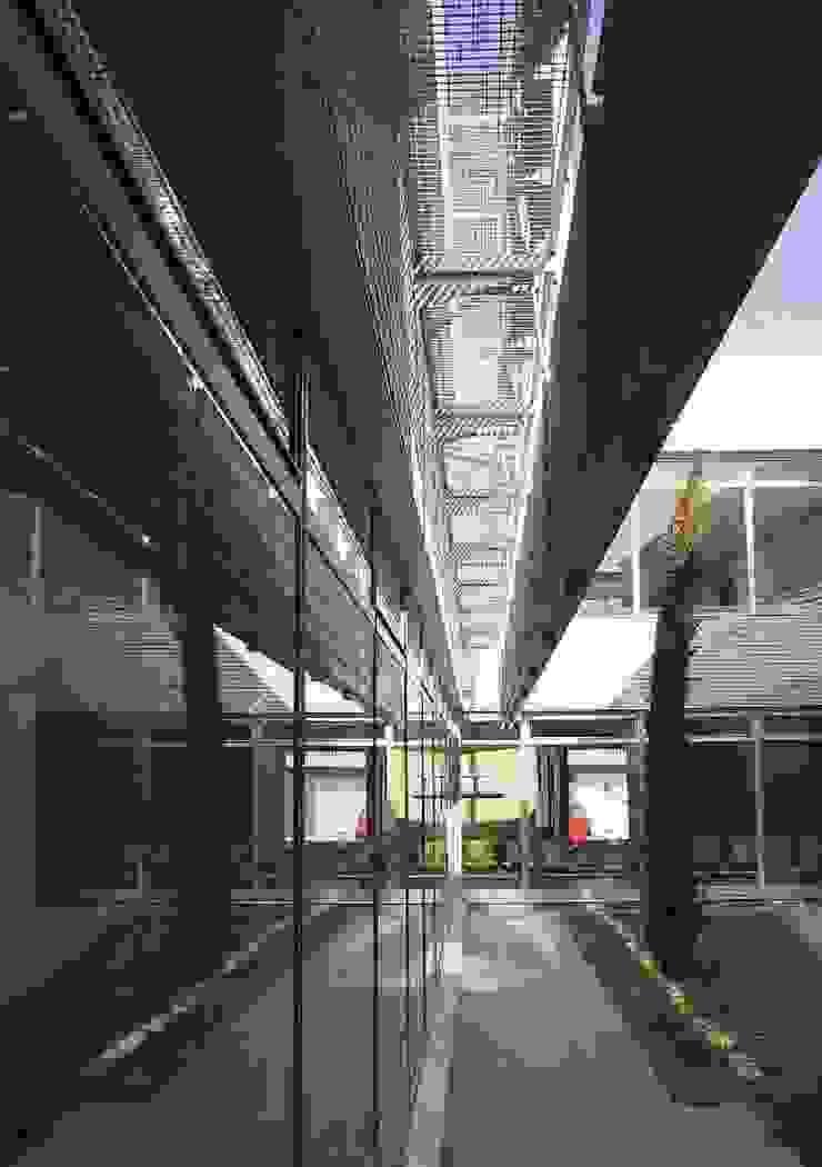Vista del patio central de Argola Arquitectos Moderno