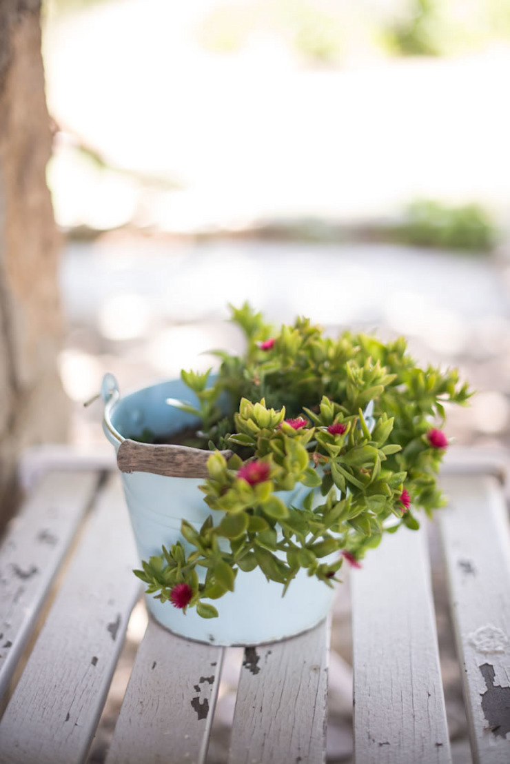 ARAL TATİLÇİFTLİĞİ Interior landscaping