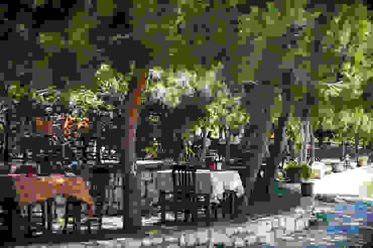 ARAL TATİLÇİFTLİĞİ Modern garden