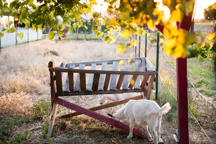 Genel Görünüm Kırsal Bahçe ARAL TATİLÇİFTLİĞİ Kırsal/Country