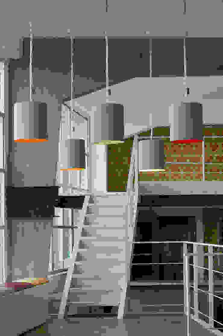 Bin cemento di in-es.artdesign Moderno