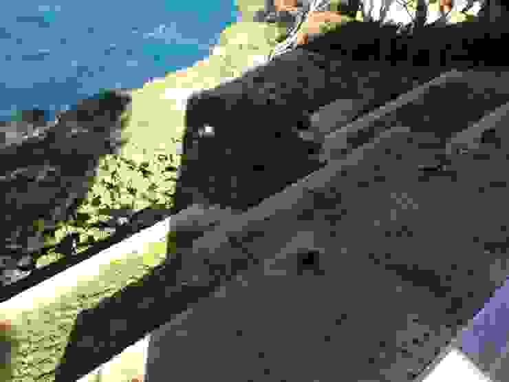 Ivan Torres Architects Modern style gardens