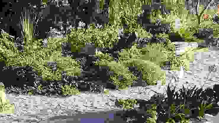 de Banzai Jardin Japonais