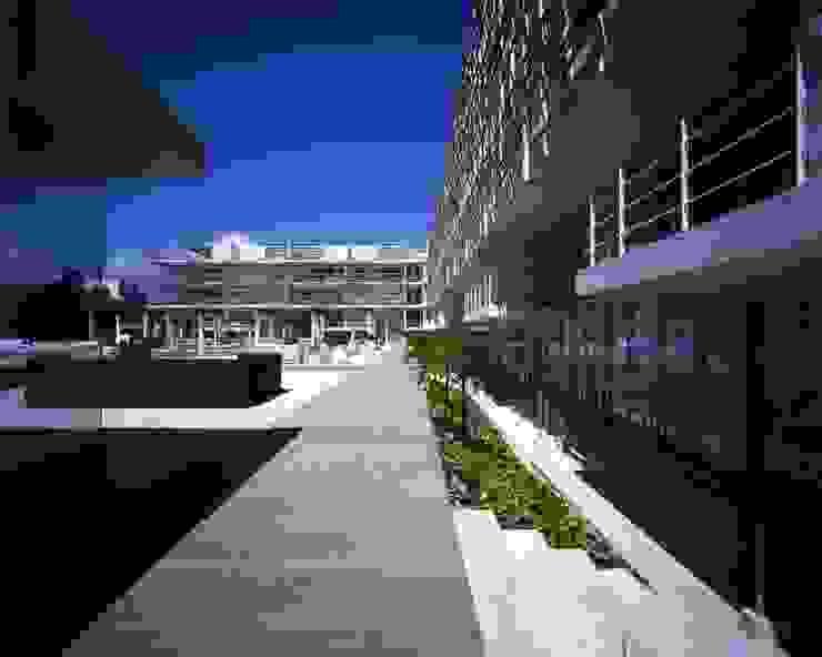 Magia Playa de Central de Arquitectura