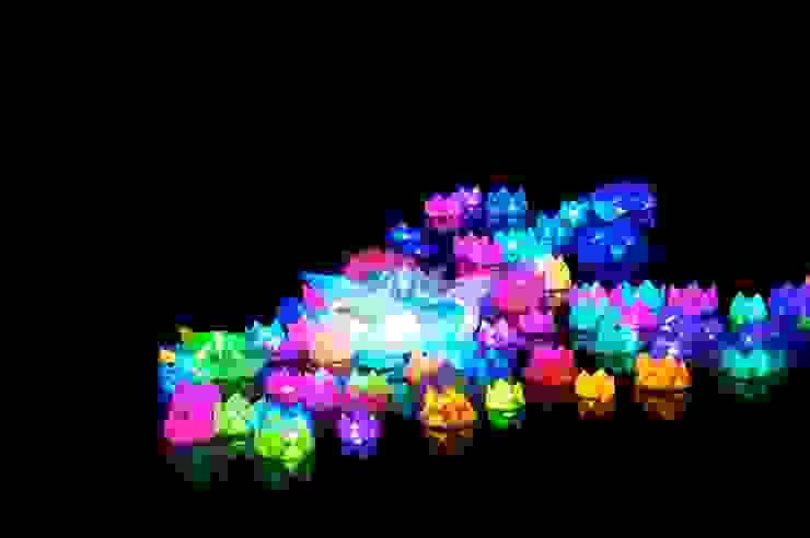 Water-Lily-Nation van LUMINAUTEN - Inszenieren mit Licht
