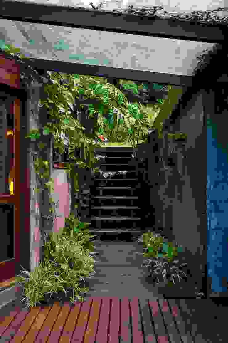Casa da Floresta Corredores, halls e escadas campestres por Ferraro Habitat Campestre