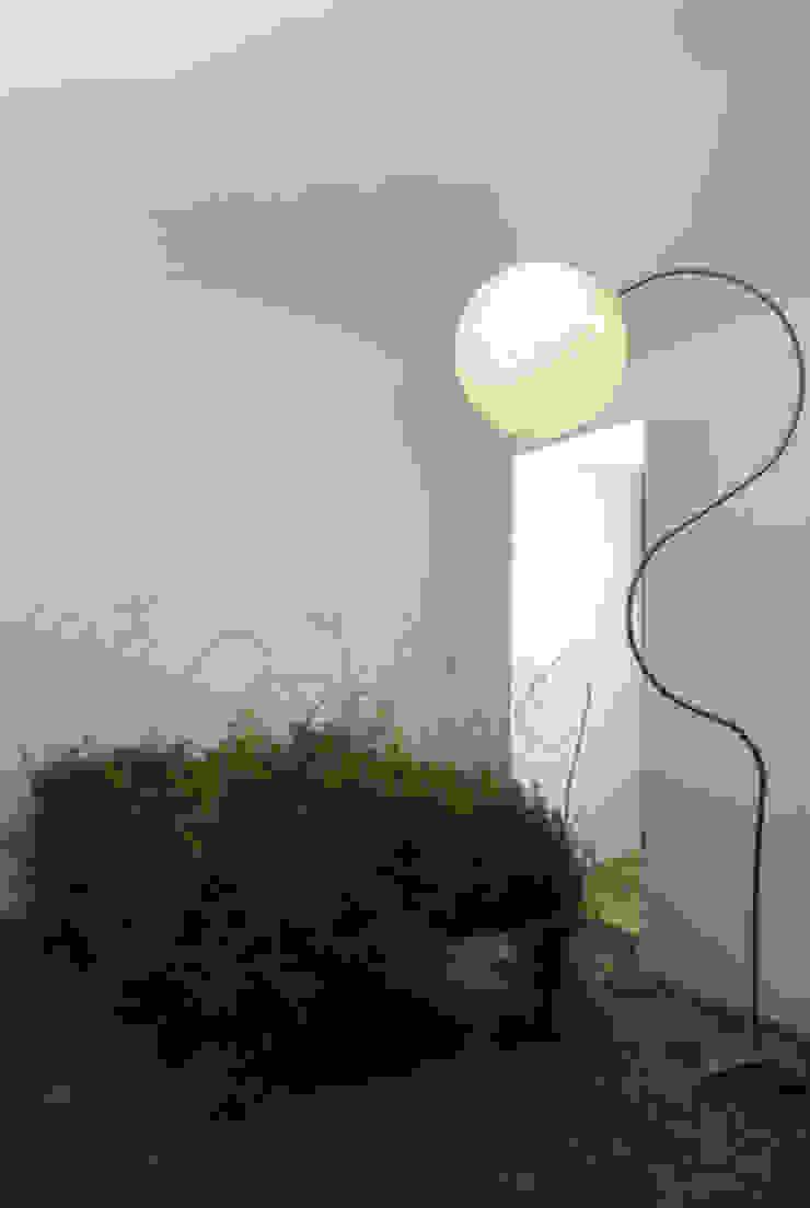 Luna piantana di in-es.artdesign Moderno