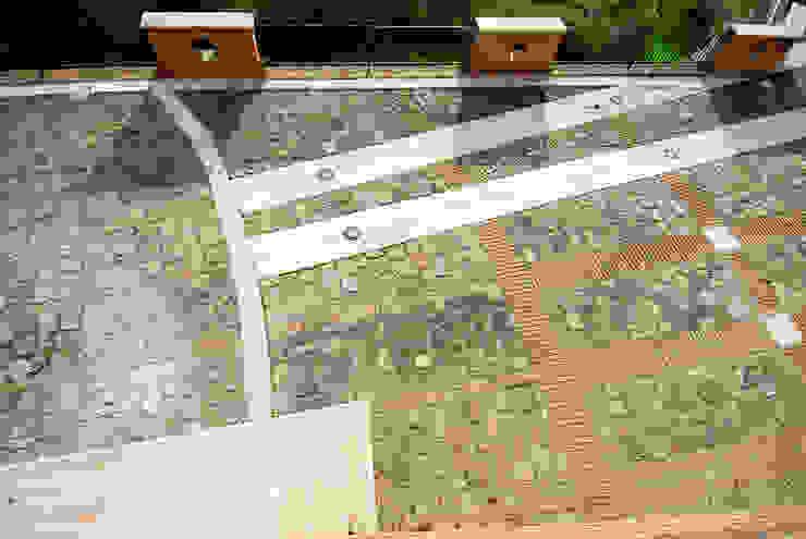 SPAZI ESTERNI Giardino classico di Studio Tecnico Arch. Lodovico Alessandri Classico
