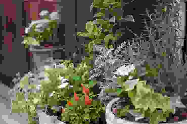 エントランスガーデン モダンな庭 の Green Style Forest モダン