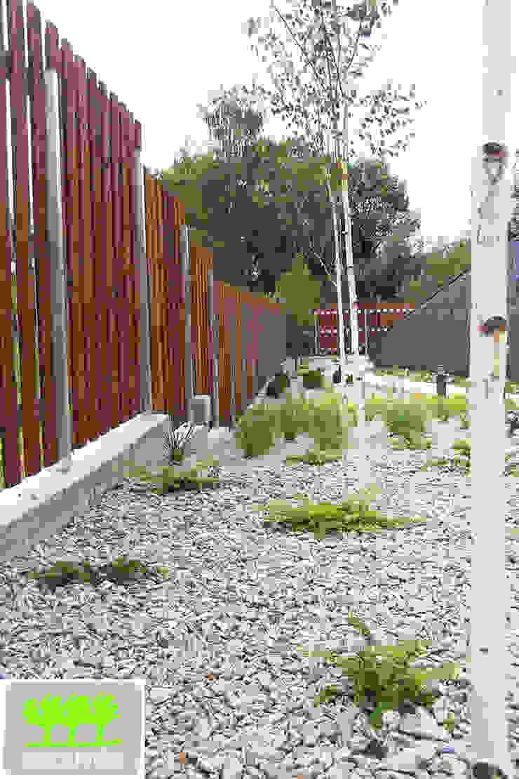 jedna z rabat wzdłuż ogrodzenia, brzozy w roli głównej od 2o2 studio Minimalistyczny