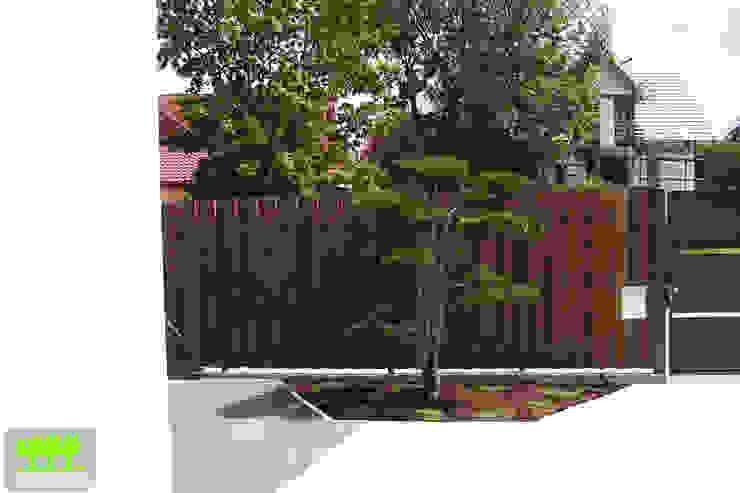 bonsai na przedogrodzie od 2o2 studio Minimalistyczny