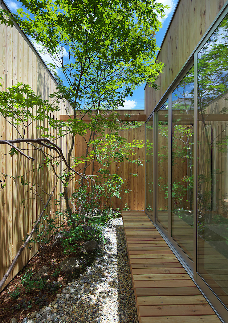 House of Nishimikuni arbol Jardines de estilo moderno