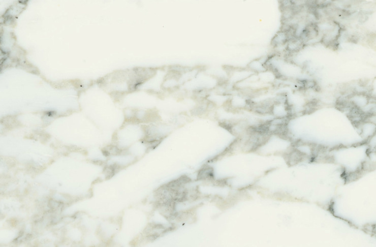 Arabescato Vagli marble by MKW Surfaces