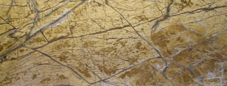 Forest Gold marble by MKW Surfaces