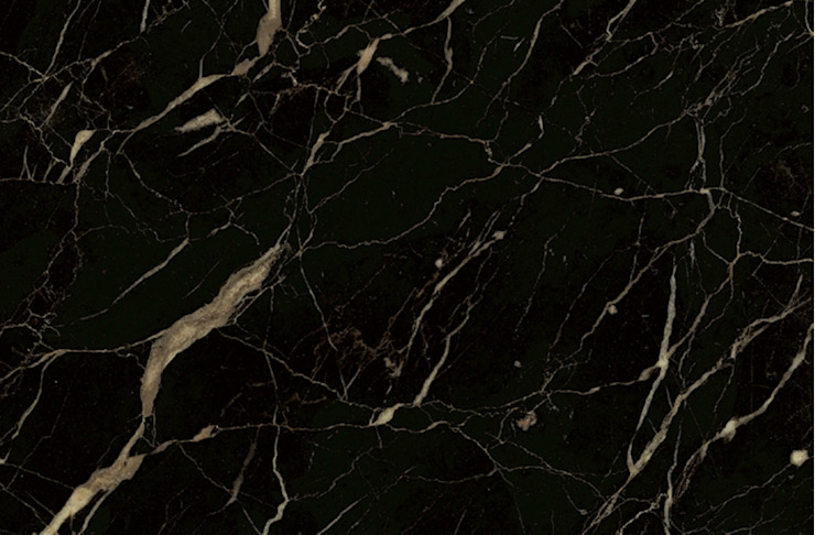 Noir St Laurent marble by MKW Surfaces