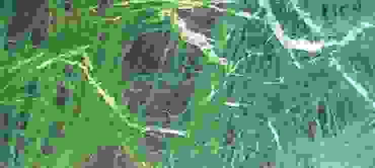 Verde Rajasthan Marble de MKW Surfaces