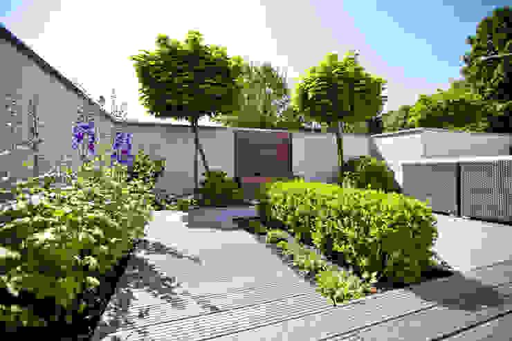 Schattiger Sitzplatz Minimalistischer Balkon, Veranda & Terrasse von +grün GmbH Minimalistisch