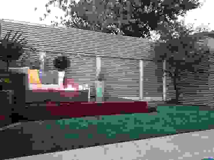 Small courtyard garden Modern garden by Paul Newman Landscapes Modern