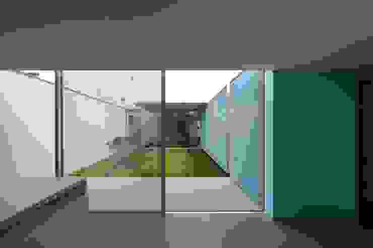 Casa Ricardo Pinto CORREIA/RAGAZZI ARQUITECTOS Pintu & Jendela Modern