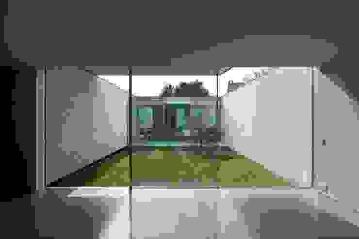 Casa Ricardo Pinto Modern windows & doors by CORREIA/RAGAZZI ARQUITECTOS Modern