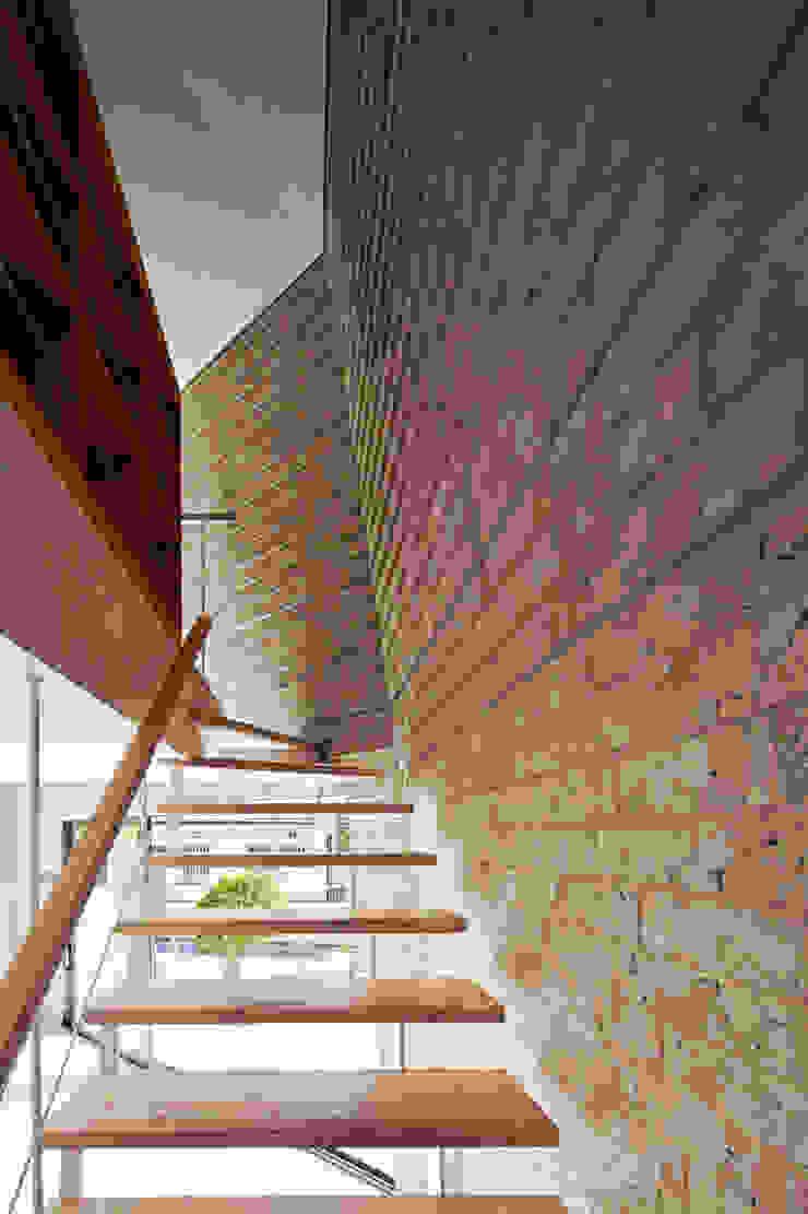 SHIRASU モダンスタイルの 玄関&廊下&階段 の ARAY Architecture モダン