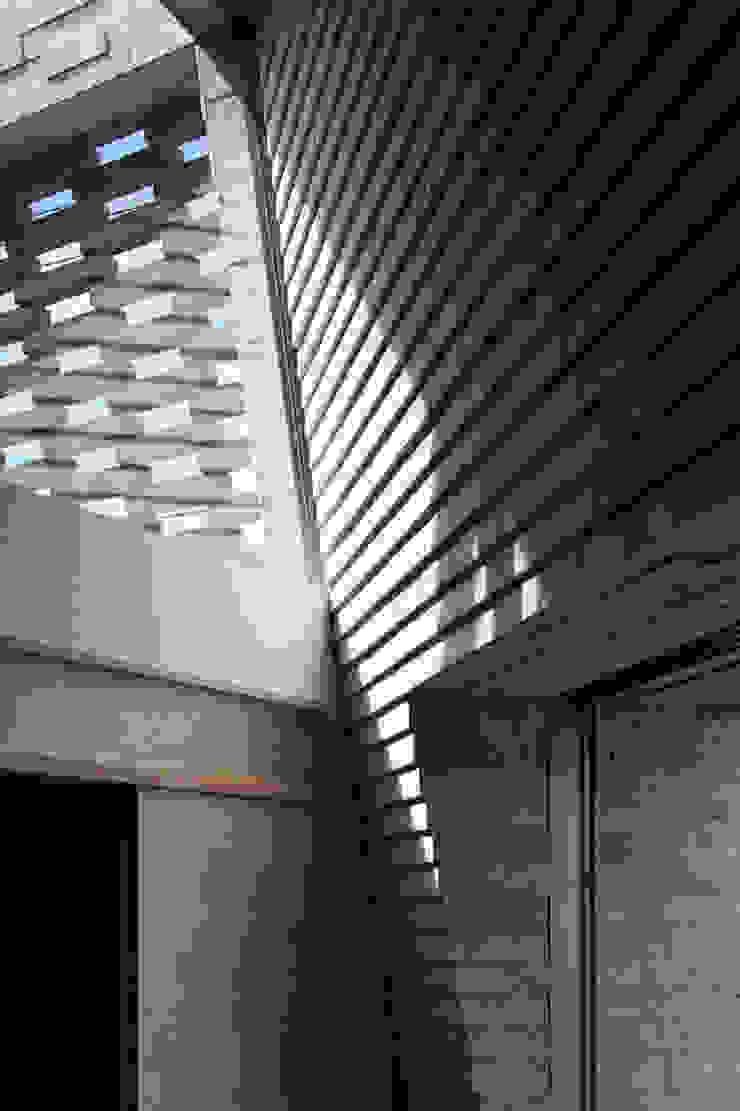 SHIRASU モダンな 壁&床 の ARAY Architecture モダン