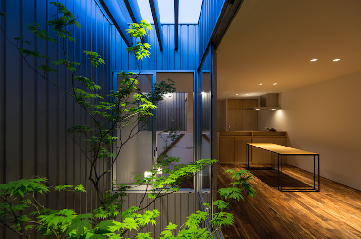Modern garden by arbol Modern