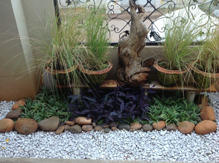 landscaping by Niche Habitats