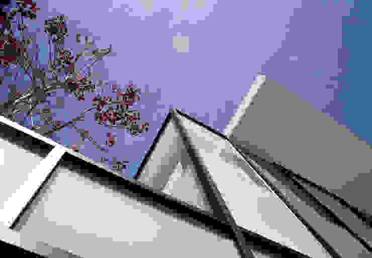 de Taller5 Arquitectos