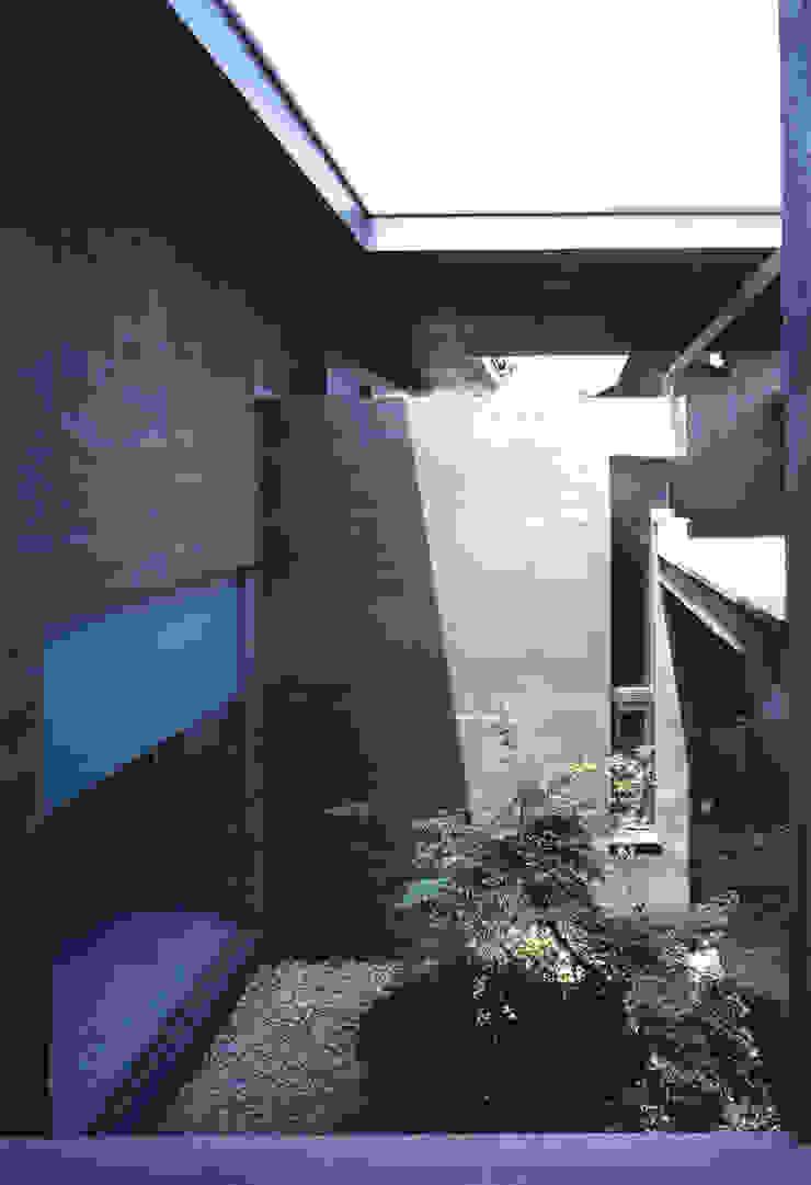 裏庭 モダンデザインの テラス の JWA,Jun Watanabe & Associates モダン
