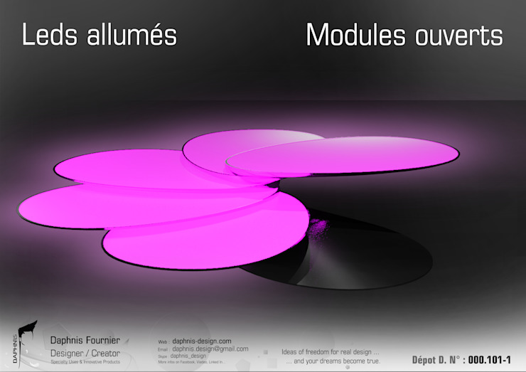 Flip par Daphnis Fournier Moderne