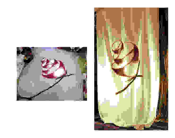 Tenda art. 247 di Elena Kihlman Scandinavo