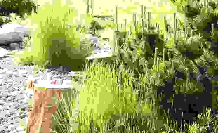 Jardines de estilo moderno de NISZA DESIGN OGRODY Moderno