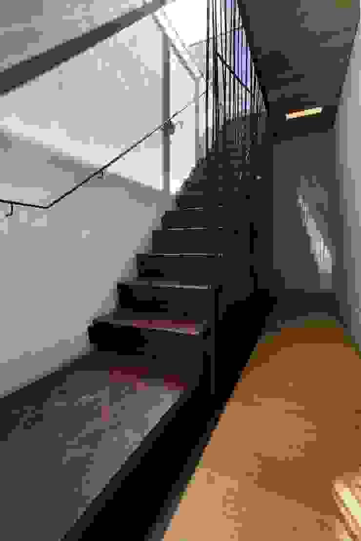 Moderner Flur, Diele & Treppenhaus von Elia Falaschi Photographer Modern
