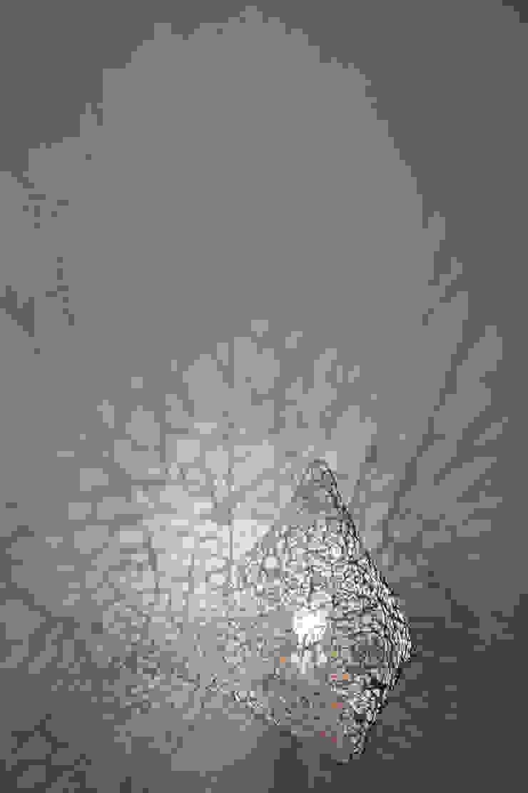 Dentelle de plâtre par Natalie Sanzache Moderne